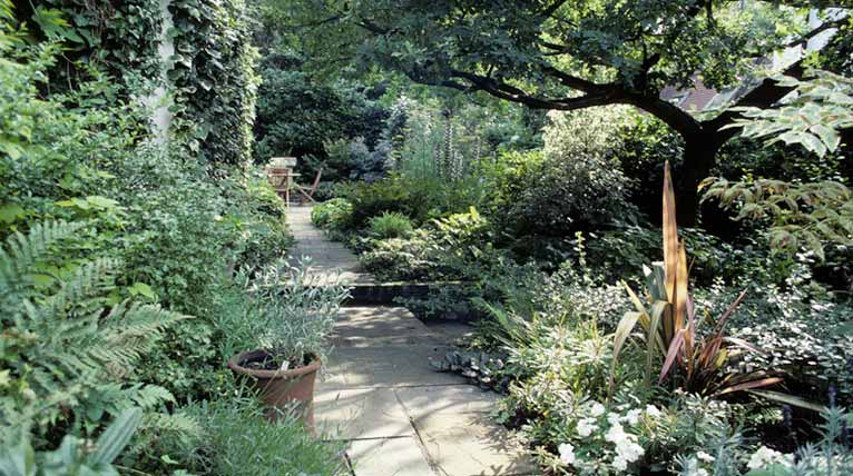 Reclaimed York stone paths and woodland planting