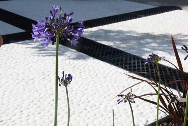 White pebbles contrast with cast iron rill covers